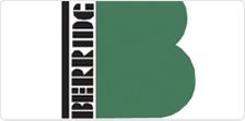 Berridc Logo